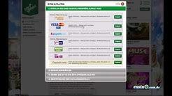 Mr Green – ein fantastisches Online Casino