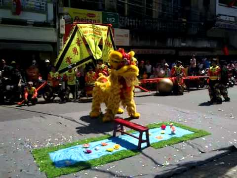 Lion Dance Hao Dung Duong 2011 豪勇堂