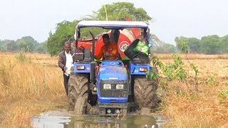 Sonalika 60 Rx Stuck In Mud With Paddy Threasher | Eicher Tractor Stuck In Mud