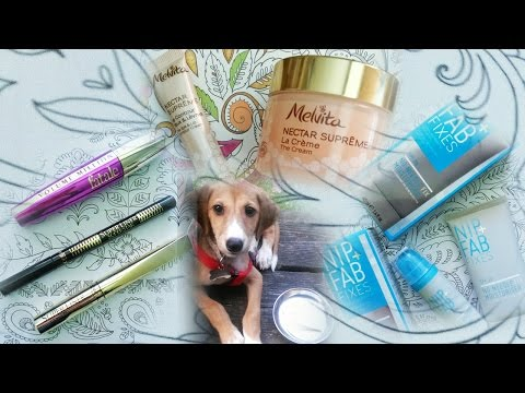 New Products! Meet The Puppy!