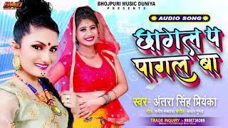 #Antra Singh Priyanka का सबसे हिट गाना - Chhagal Pa Pagal Ba - छागल प पागल बा - #Bhojpuri Songs 2020
