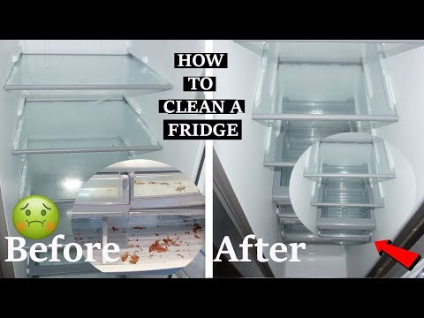 How I Clean My Fridge| How To Deep Clean & Sanitize your Fridge