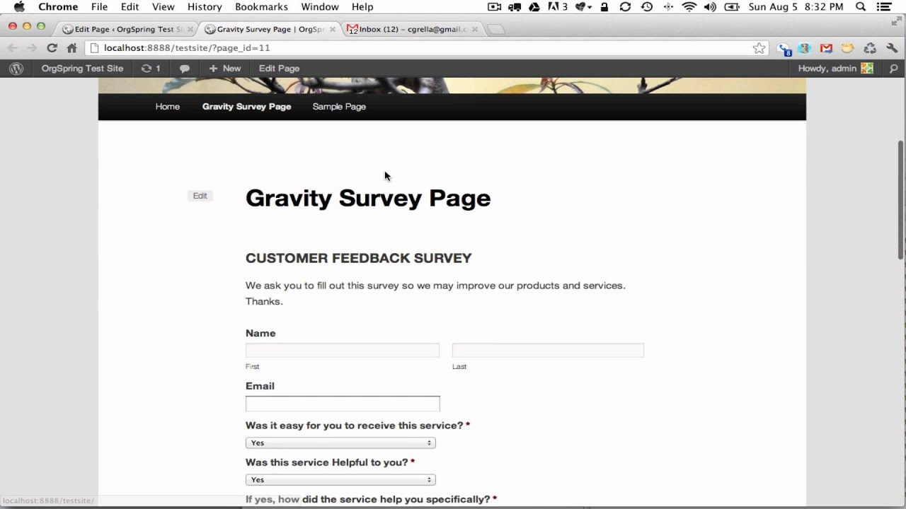 how to add gravity form to page avada