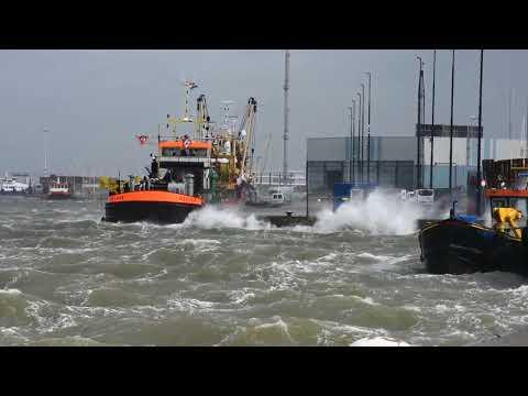 Storm aan de kust van Harlingen ( 13-09-2017 )