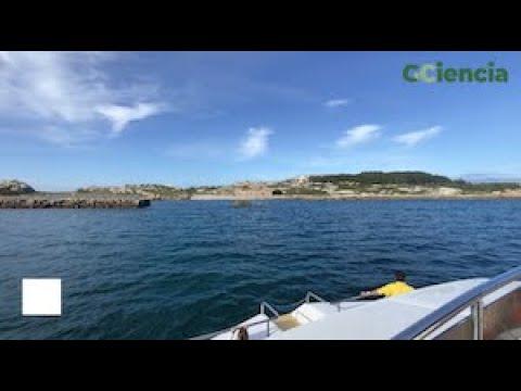 Sálvora, o encanto salvaxe das Illas Atlánticas