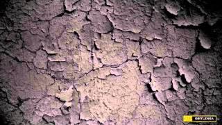 XPDC~Cekal with lyrics