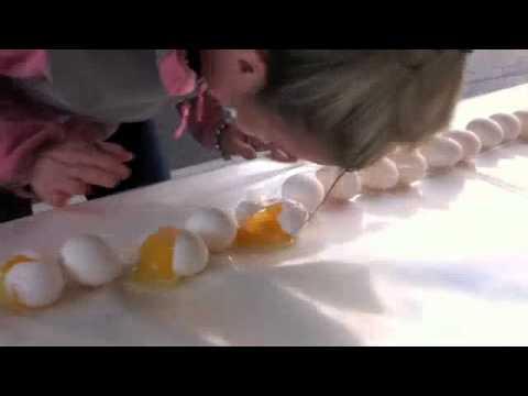 Intern Alyssa Cracks Eggs with Forehead part 2 Mp3