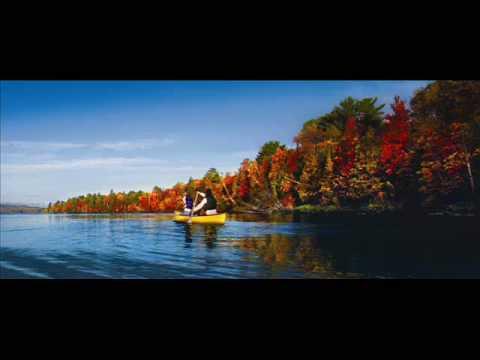 Michigan Fall Colors | Pure Michigan