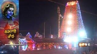 Maha Shivaratri Celebrations in Srisailam