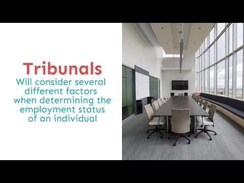 Fortnightly focus - employment status