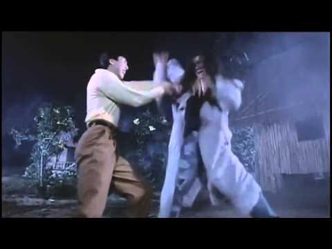 Donnie Yen vs Ken Lo HD