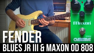 Fender Blues Junior + Maxon OD808