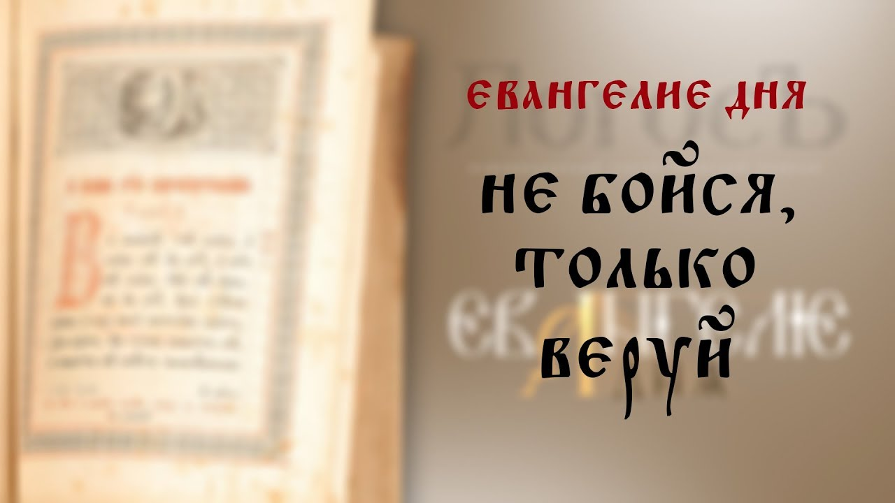 Евангелие дня: Не бойся, только веруй