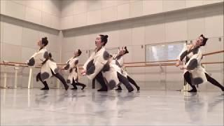 【第一回 日本舞踊 未来座「賽=SAI=」】 『当世うき夜猫』をチラ見せ!! その2
