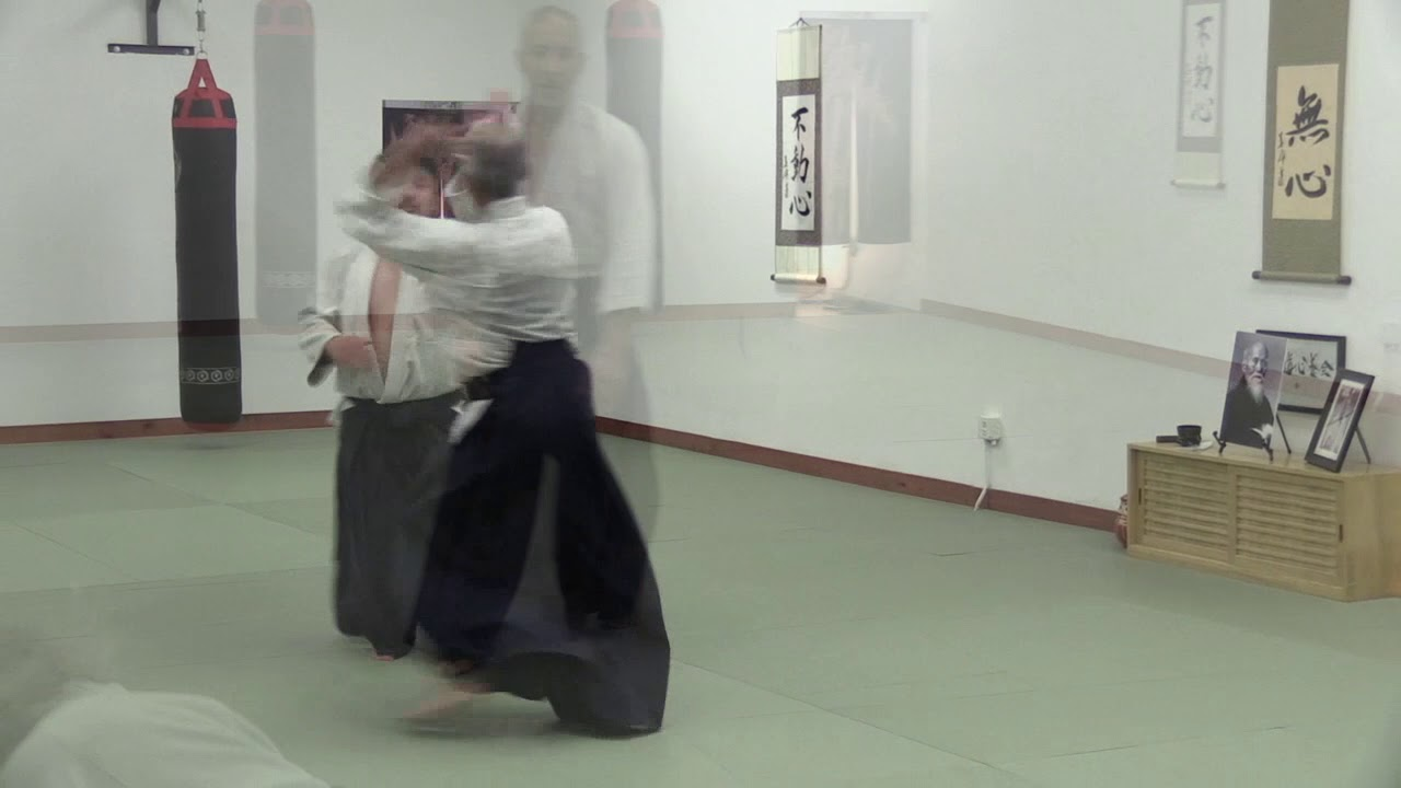 Gassaku Aikido Promo video - T. Diagana, Shidoin