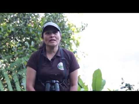 Vídeo Curso guia turismo senac