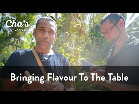 Cha's Organics - Bringing Flavour To The Table