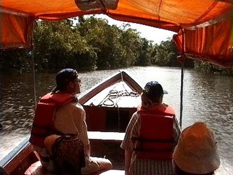 Venezuela - Orinoco Delta - Dschungel Exkursion