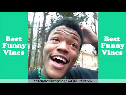 Download Best DC Young Fly Vines