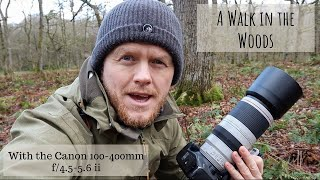 Canon 100-400mm f/4.5-5.6 ii | A Walk in the Woods