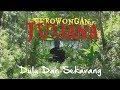 TEROWONGAN KERETA API PALING MENIKUNG DI HUTAN || Ekspedisi jalur kereta api Banjar - Cijulang.