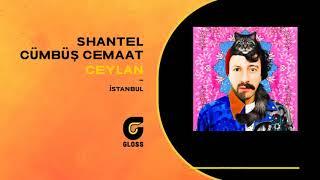 Shantel & Cümbüş Cemaat - Ceylan (İstanbul)