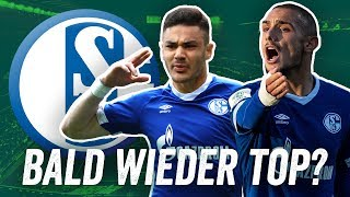 Warum Schalke die Bundesliga 2019/20 erobern wird!