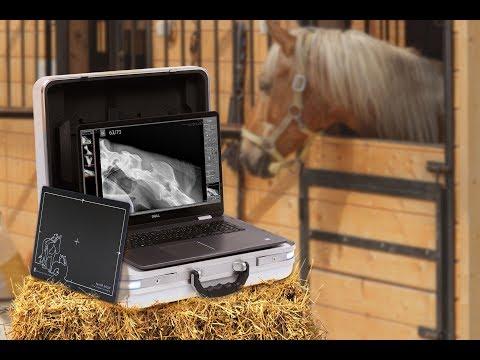 X ray suitcase solution Leonardo DR mini II