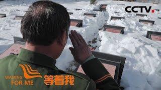 [等着我 第五季] 天山守墓人为牺牲战友寻家 又找到八十七位家人   CCTV