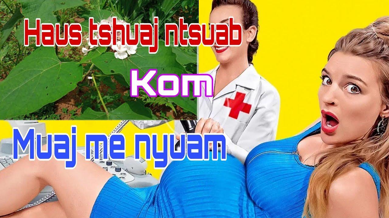 Xwm Txheej Haus Tshuaj Ntsuab Muaj Me Nyuam