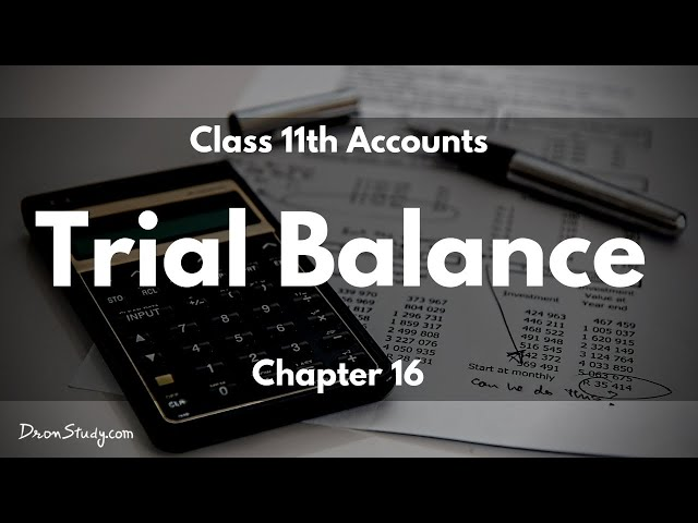 Trial Balance: Class 11 XI Accounts | Video Lecture
