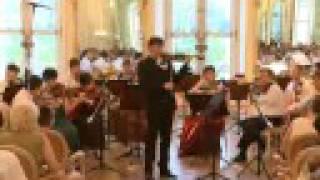 Haydn G major Violin Concerto I. mvmt.