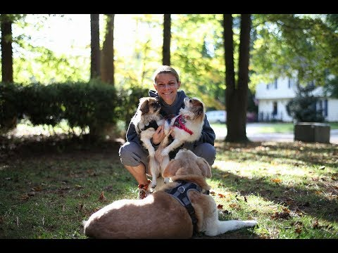Pitt County Animal Services Nomination for the 2018 PetCo Unsung Heroes Award