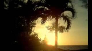 Download Video বনলতাসেন - জীবনানন্দ দাশ  /  Bonolotasen - Jibonanando Das MP3 3GP MP4
