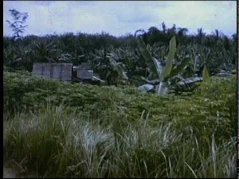 Borneo Indonesia Malaysia confrontatian British 1962 to 66 Part 3