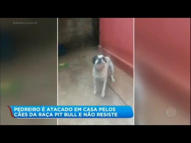 Pedreiro morre após ser atacado por seus próprios cães da raça Pit Bull
