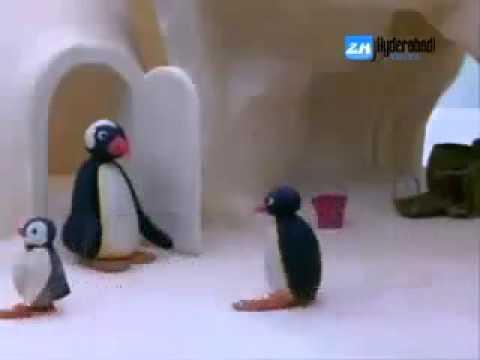 Hyd penguins