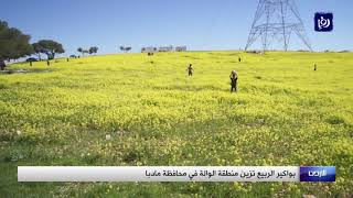 شاهد.. بواكير الربيع تزين منطقة الوالة (1/3/2020)