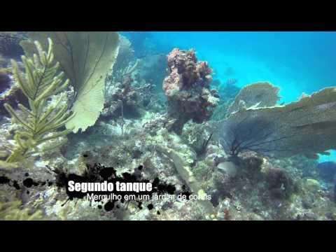 Mergulhos em Anguilla / Caribe