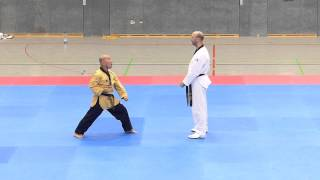 22. Internationales Taekwondo Camp in Attendorn 2015 - Satori Ahlen