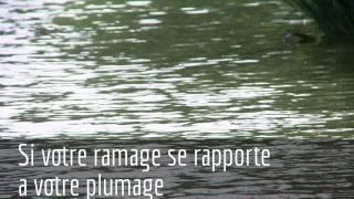 Скачать Le Corbeau Et Le Renard Extreme With Pictures Jean De La Fontaine