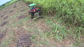 Esm SickleSword Cutting Sugarcane At The Philippines   Drone 1