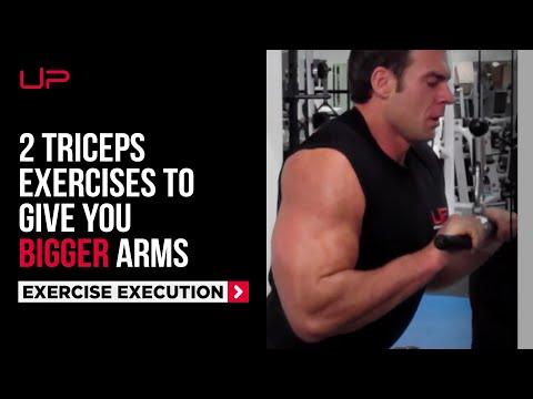 BIGGER triceps!