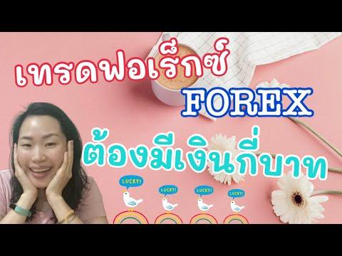 เทรด Forex กับทอง เพื่อทำกำไร ต้องมีเงินเท่าไหร่ เงินหลักร้อยไหวใหม คลิปนี้มีคำตอบ