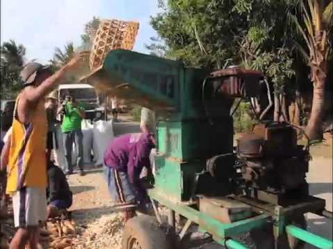 DA BAR   BAI NSPRDC Project Pag aalaga ng Native na Baboy