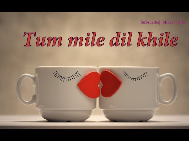 💞Most Heart Touching  || Tum mile dil khile Whatsapp status video