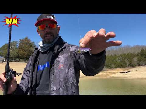 Four Different Ways To Fish A Blade Bait With Fishing Superstar Mike Iaconelli