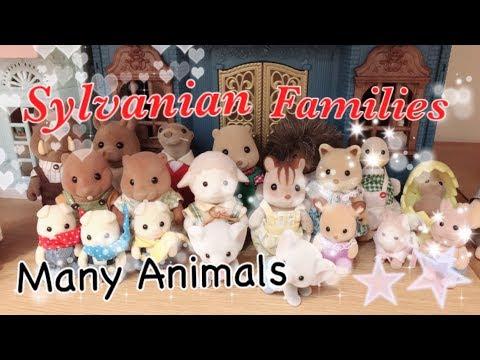 2018森林家族最後珍奇異獸收集大調查Sylvanian Families Many Animals♥迷之森♥