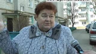 В Новозыбкове голубей заживо замуровали на чердаке многоэтажки
