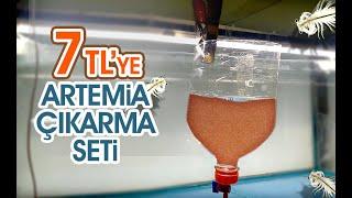 7 TL'ye Artemia Çıkarma Seti Yapabilirsiniz